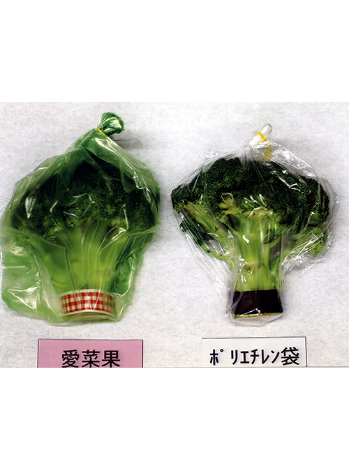 Keep Fresh! Reusable Fruit & Veg Bag (L) (made from Japan Oya stone) 2